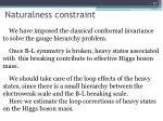 naturalness constraint