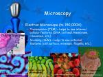microscopy1