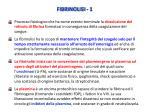 fibrinolisi 1