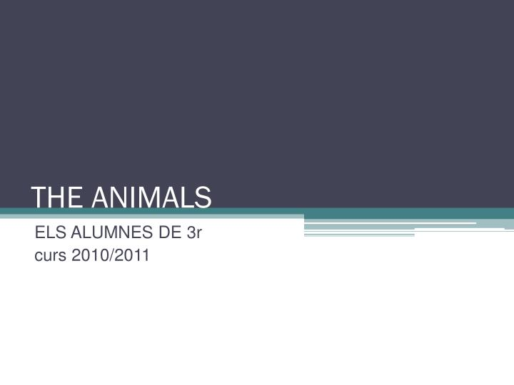 the animals n.