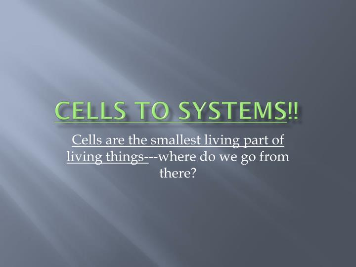 cells to systems n.