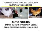 very important concept of poultry nutrition to remember