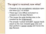the signal is received now what
