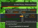 guided notes photosynthesis