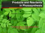 products and reactants in photosynthesis1
