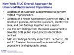 new york silc overall approach to unserved underserved populations