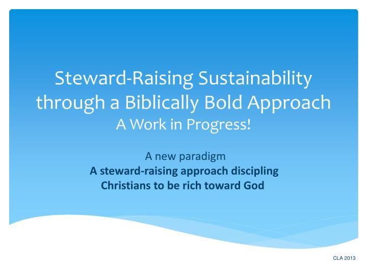 steward raising sustainability through a biblically bold approach a work in progress n.