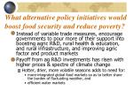 what alternative policy initiatives would boost food security and reduce poverty