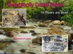 biologically dead rivers
