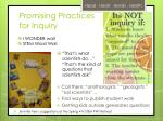 promising practices for inquiry