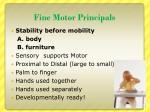 fine motor principals