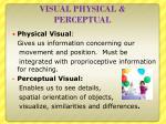 visual physical perceptual