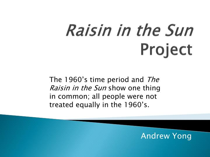 raisin in the sun project n.