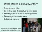 what makes a great mentor3