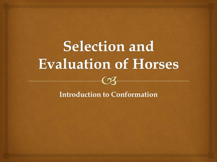 selection and evaluation of horses n.