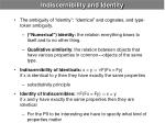 indiscernibility and identity