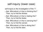 self inquiry lower case