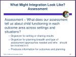 what might integration look like assessment