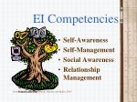 ei competencies