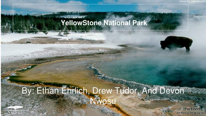 yellowstone national park n.