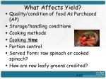 what affects yield