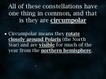 all of these constellations have one thing in common and that is they are circumpolar
