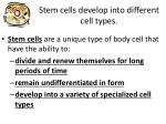 stem cells develop into different cell types