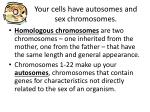 your cells have autosomes and sex chromosomes