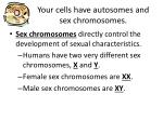 your cells have autosomes and sex chromosomes1