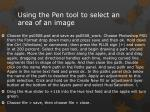 using the pen tool to select an area of an image
