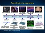 from brains to machines