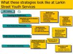 what these strategies look like at larkin street youth services