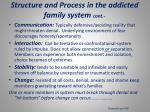 structure and process in the addicted family system cont