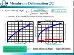 membrane deformation 2 2