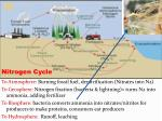 the carbon cycle1