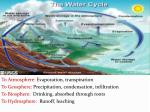 the carbon cycle3