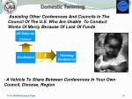 domestic twinning