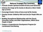 national strategic plan summary