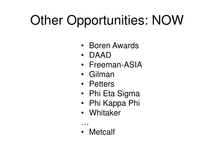 Other Opportunities: NOW