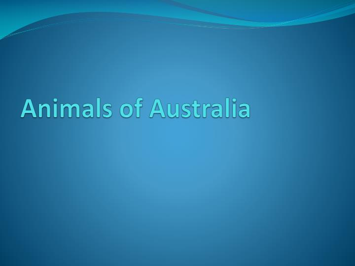 animals of australia n.