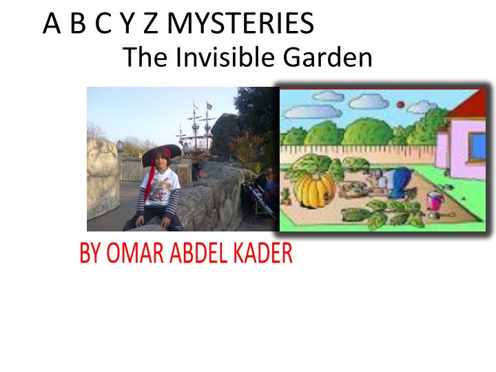 the invisible garden n.