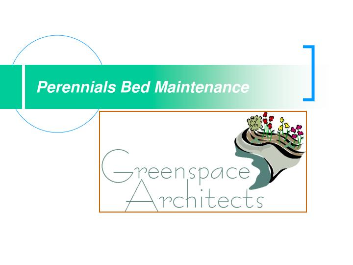 perennials bed maintenance n.