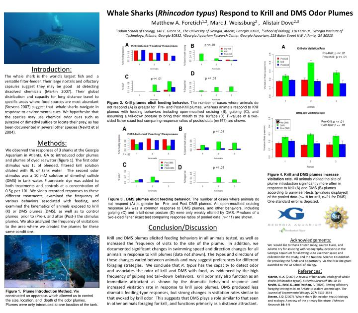 whale sharks rhincodon typus respond to krill and dms odor plumes n.