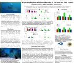 whale sharks rhincodon typus respond to krill and dms odor plumes