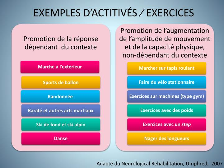 exemples d actitiv s exercices n.