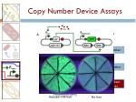 copy number device assays