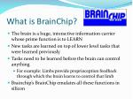 what is brainchip