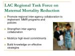 lac regional task force on maternal mortality reduction