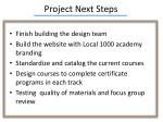 project next steps