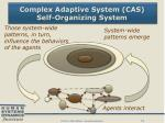 complex adaptive system cas self organizing system